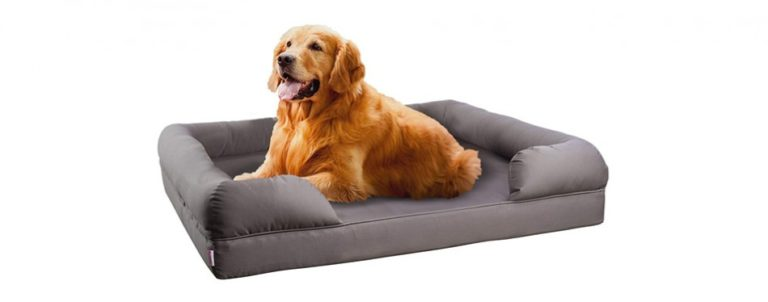 5 Best Dog Beds For German Shepherds 2019 Reviews Buypetsupplyonline