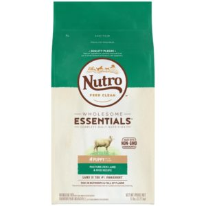 Nutro Wholesome Essentials Puppy Dry Dog Food For Labradoodles