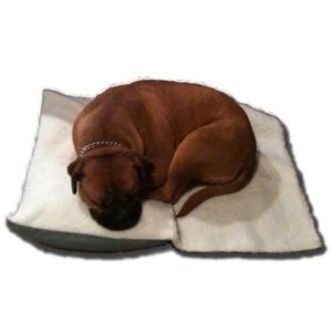Enrych Separation Anxiety Relief Dog Bed for dogs with anxiety