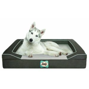 Sealy Lux Quad Orthopedic Dog Bed with Cooling Gel for akitas