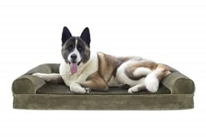 Furhaven Pet Dog Bed with a Cooling Gel