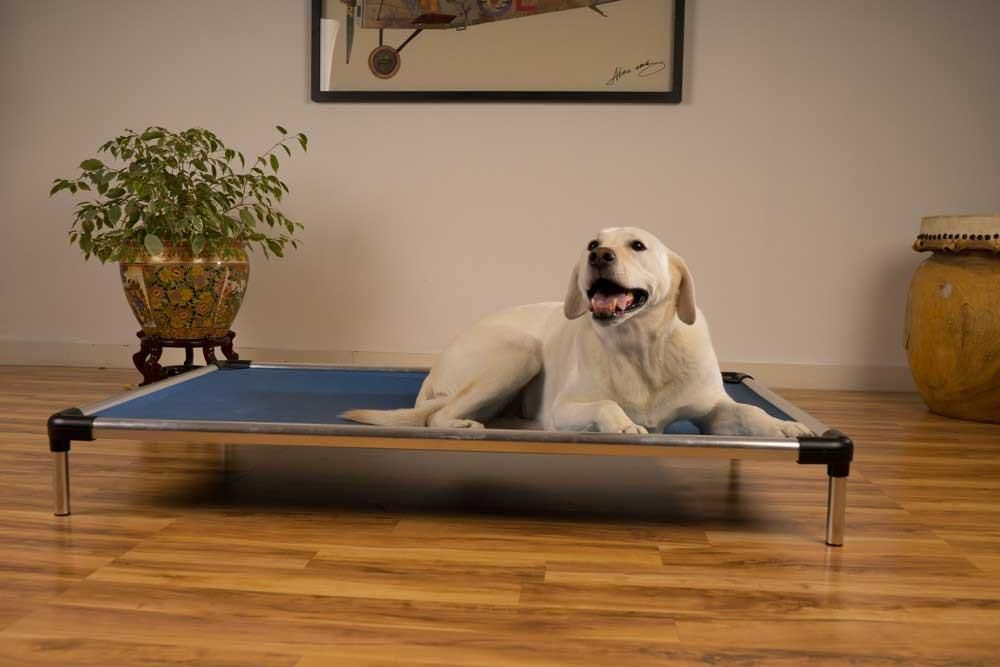 cujo dog bed review